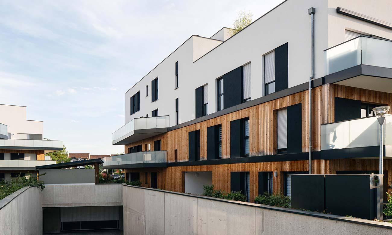 Wood White Complex